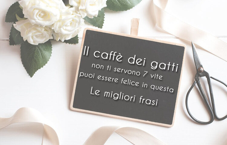 il-caffè-dei-gatti-frasi